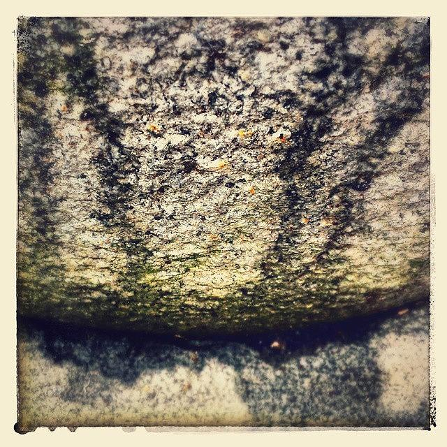 Beautiful Photograph - Textured 1 by J Roustie