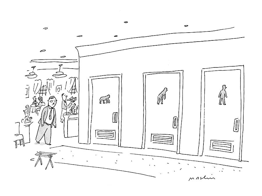 Bathroom Evolution Drawing by Michael Maslin
