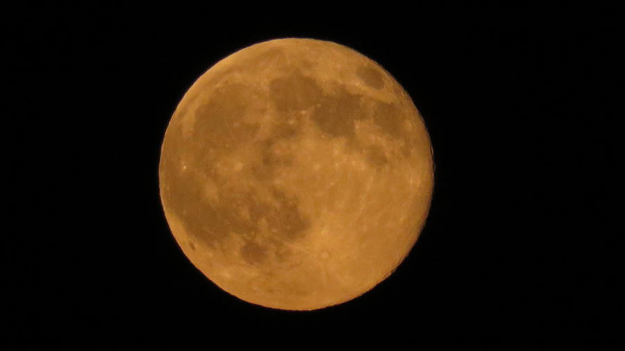 7-12-14 Super Moon Photograph