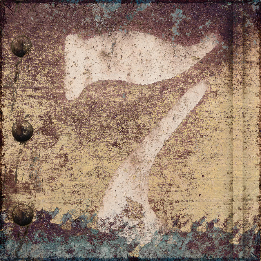 Photomontage Photograph - 7 And Rivets by Carol Leigh