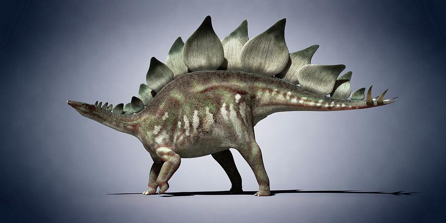 Artwork Photograph - Dinosaur by Sciepro
