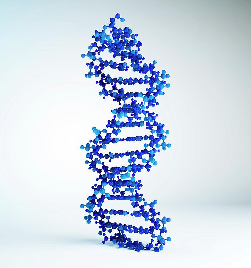 Dna Molecule, Artwork Digital Art by Andrzej Wojcicki