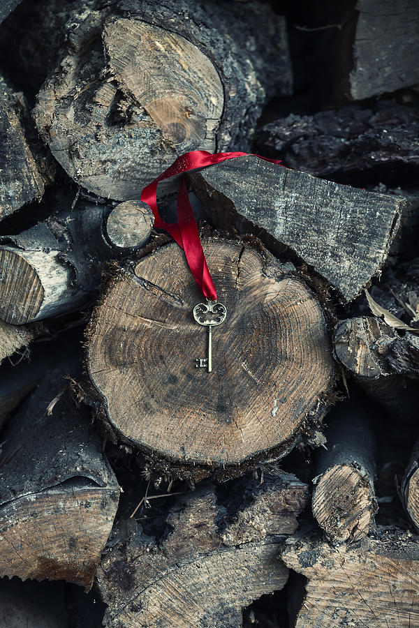 Key Photograph - key by Joana Kruse
