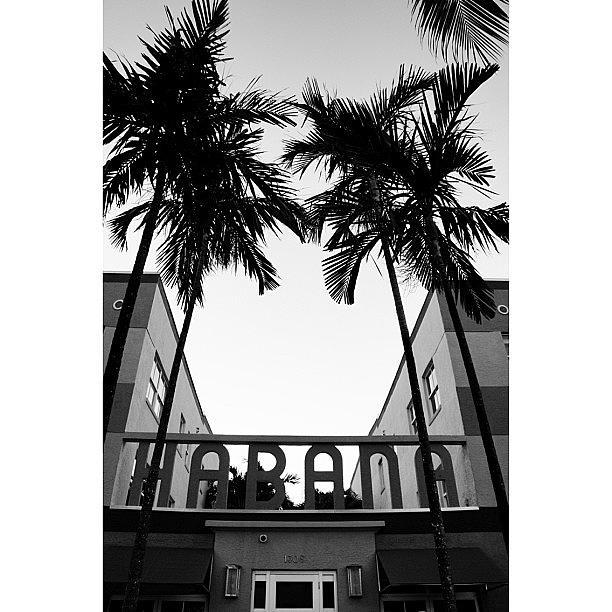 Blackwhite Photograph - {miami Beachs Art Deco}  In 1979 7 by Joel Lopez