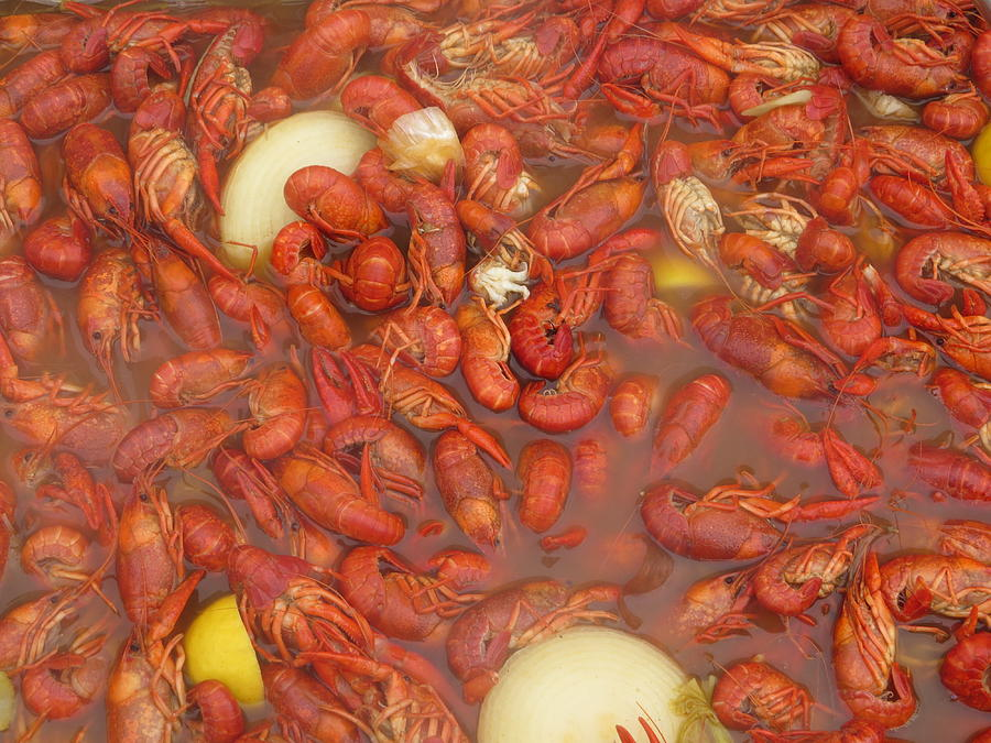 New Orleans French Quarter Cajun Food Seafood By Art504