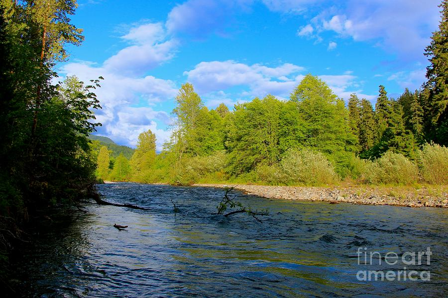 Blue Love Photograph - Salmon  Creek  by Tim Rice