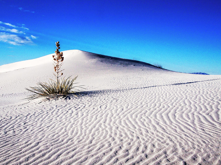 Away From It All Photograph - Usa, New Mexico, White Sands National by Terry Eggers