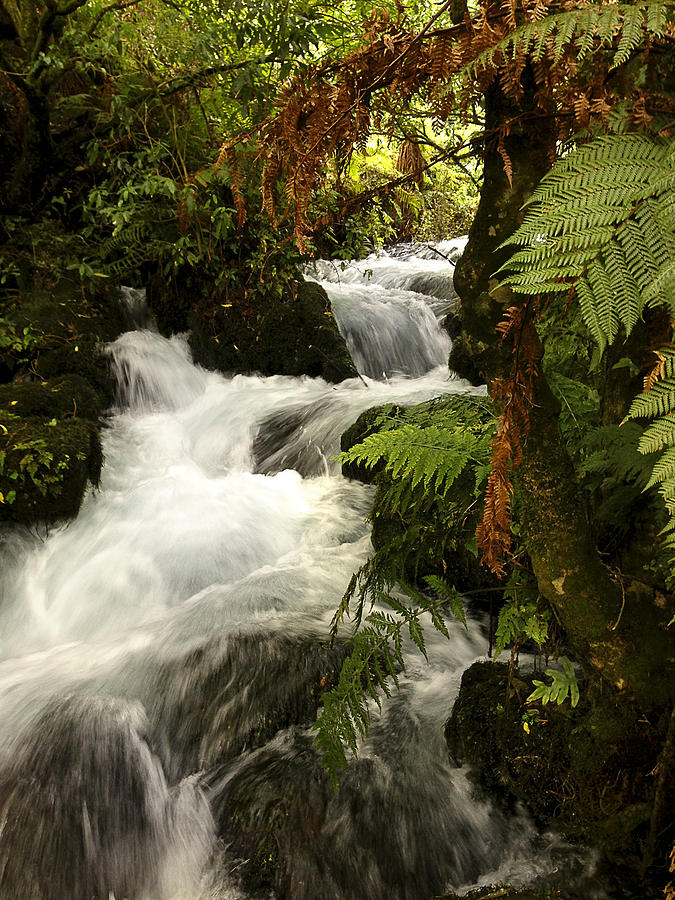 Water Photograph - Waterfall  by Les Cunliffe