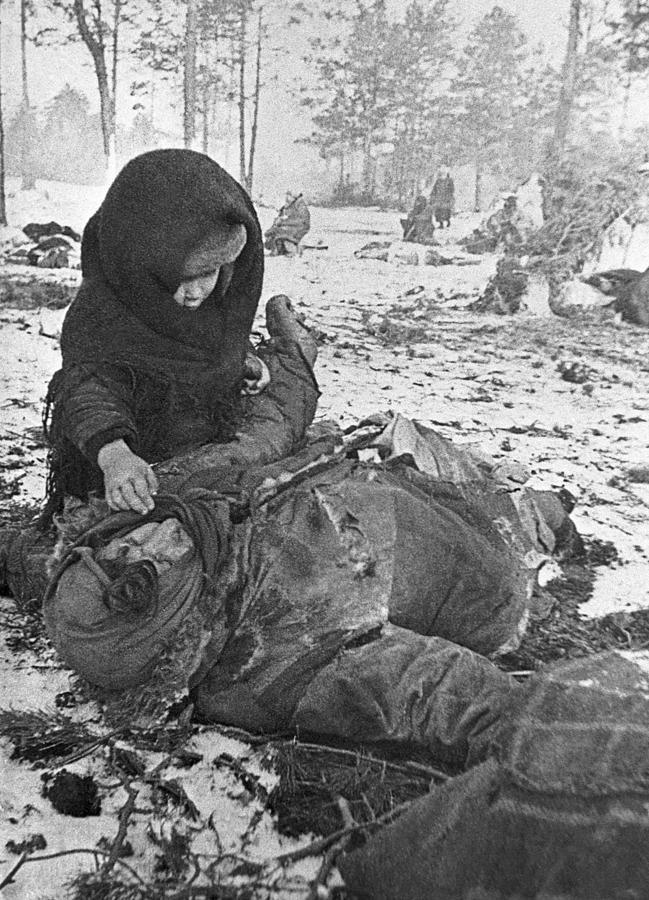 World War II, 1944 Photograph by Tass