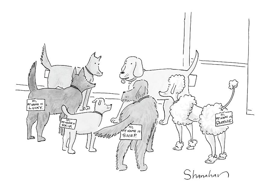 New Yorker September 17th, 2007 Drawing by Danny Shanahan
