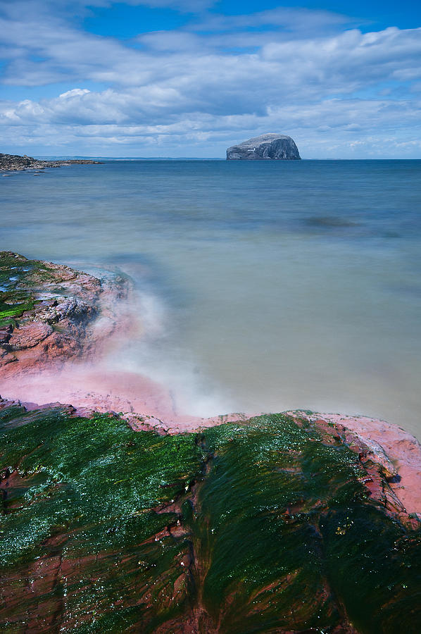 Bass Rock Photograph - Bass Rock by Keith Thorburn LRPS