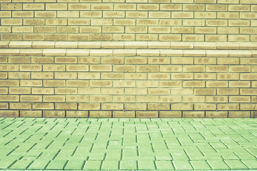 Abstracts Photograph - Brick Wall by Tom Gowanlock