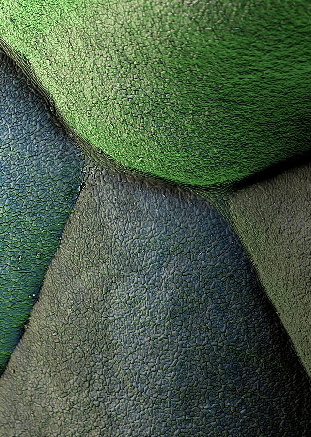 Broccoli Photograph - Broccoli by Stefan Diller