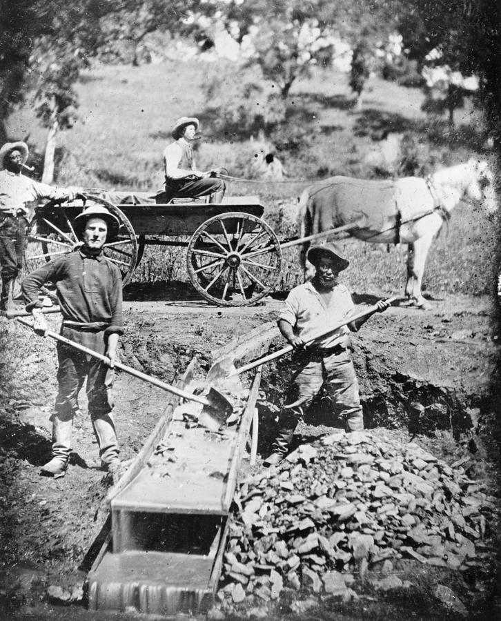 1852 Photograph - California Gold Rush, 1852 by Granger