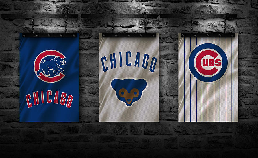 Cubs Photograph - Chicago Cubs by Joe Hamilton