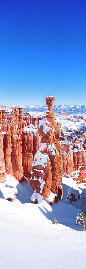 Color Image Photograph - Eroded Rocks In A Canyon, Bryce Canyon by Panoramic Images