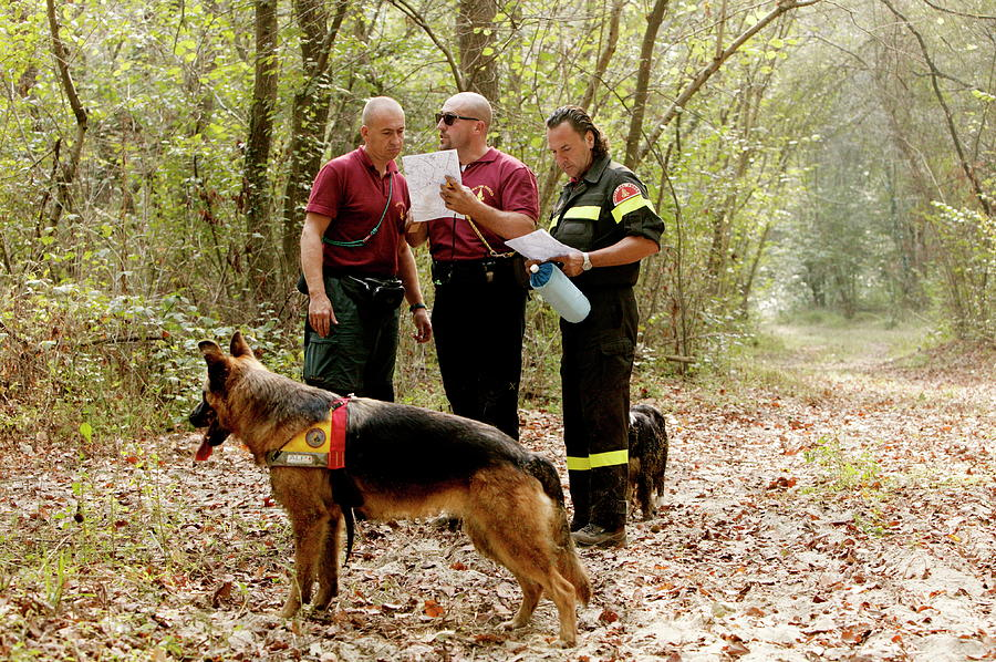 Dog Photograph - Mountain Rescue Workers by Mauro Fermariello/science Photo Library