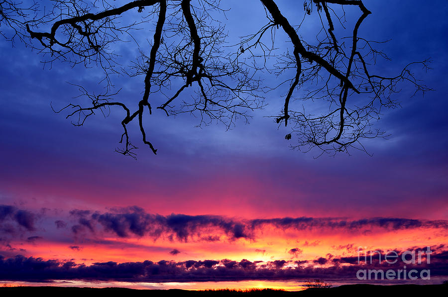 Sunrise Photograph - Red Sky At Morning by Thomas R Fletcher