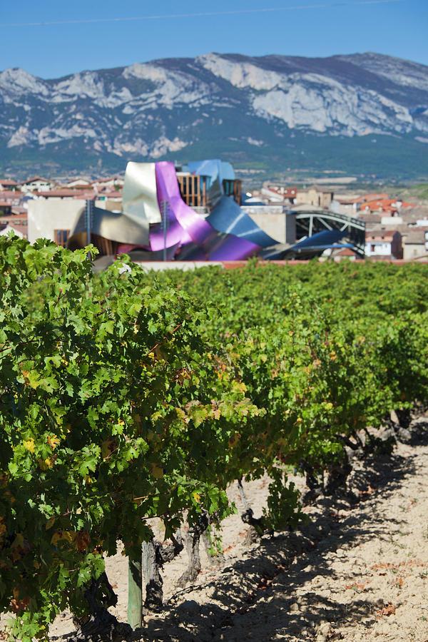 Architect Photograph - Spain, Basque Country Region, La Rioja by Walter Bibikow