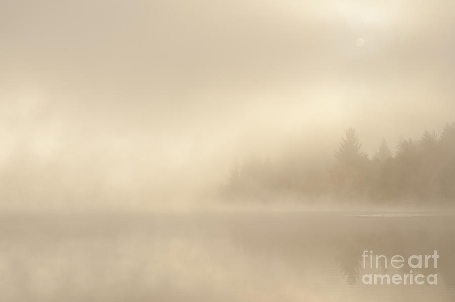 Sunrise Lake In Fog With Trees Shrouded In Mist Photograph