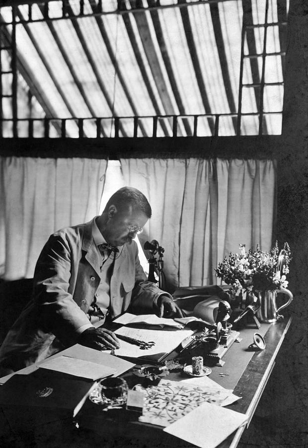 1905 Photograph - Theodore Roosevelt(1858-1919) by Granger