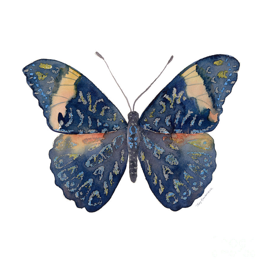 Blue Butterfly Painting - 89 Red Cracker Butterfly by Amy Kirkpatrick