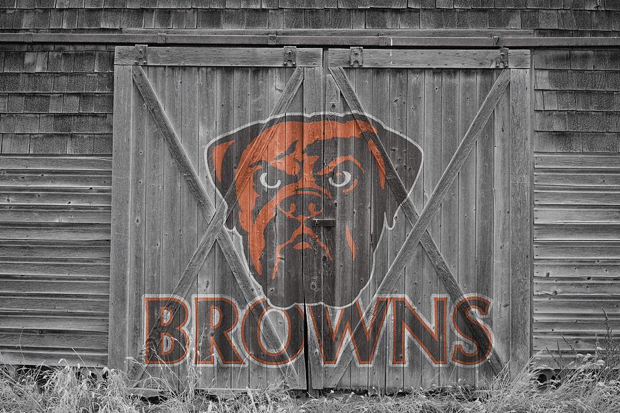 Browns Photograph - Cleveland Browns by Joe Hamilton