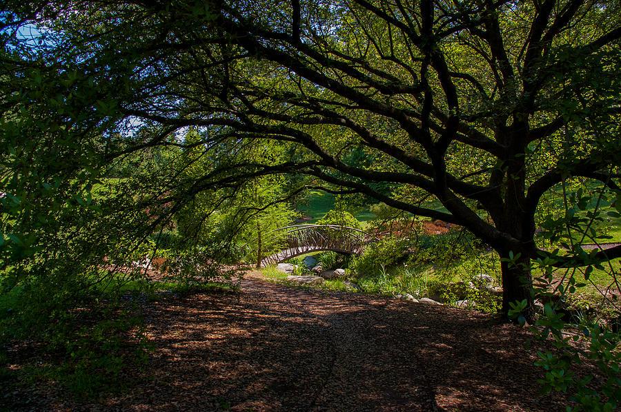 Duke Gardens Photograph - Duke Gardens by Gene Hilton
