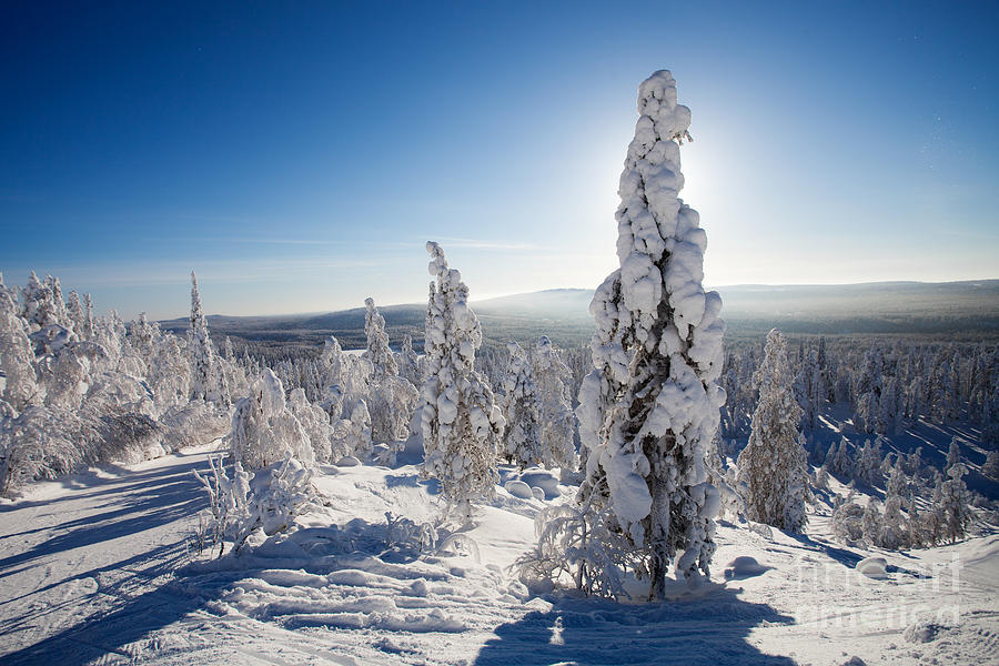 Lapland Finland Photograph