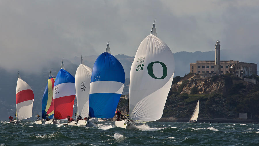 San Francisco Photograph - San Francisco Spinnakers by Steven Lapkin