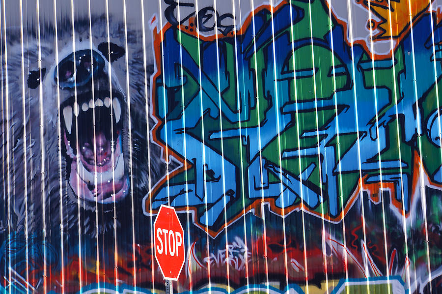 Graffiti Photograph - Shadows Of Substance by Steve Keller