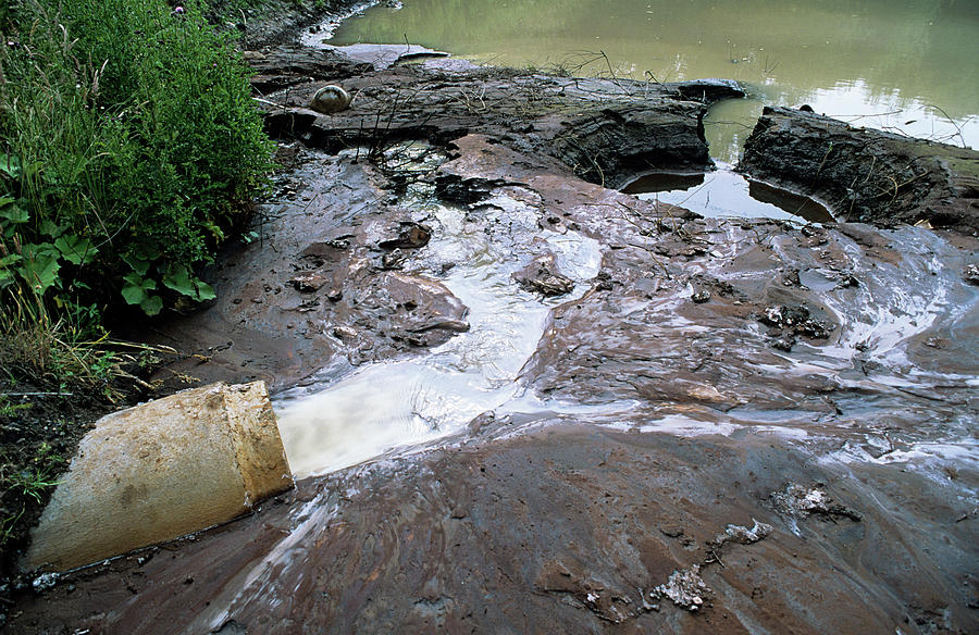 River Photograph - Water Pollution by Robert Brook/science Photo Library