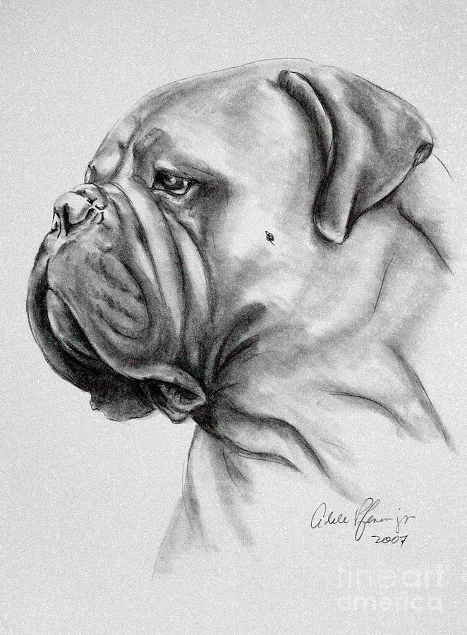 Dog Drawing - 911 by Adele Pfenninger