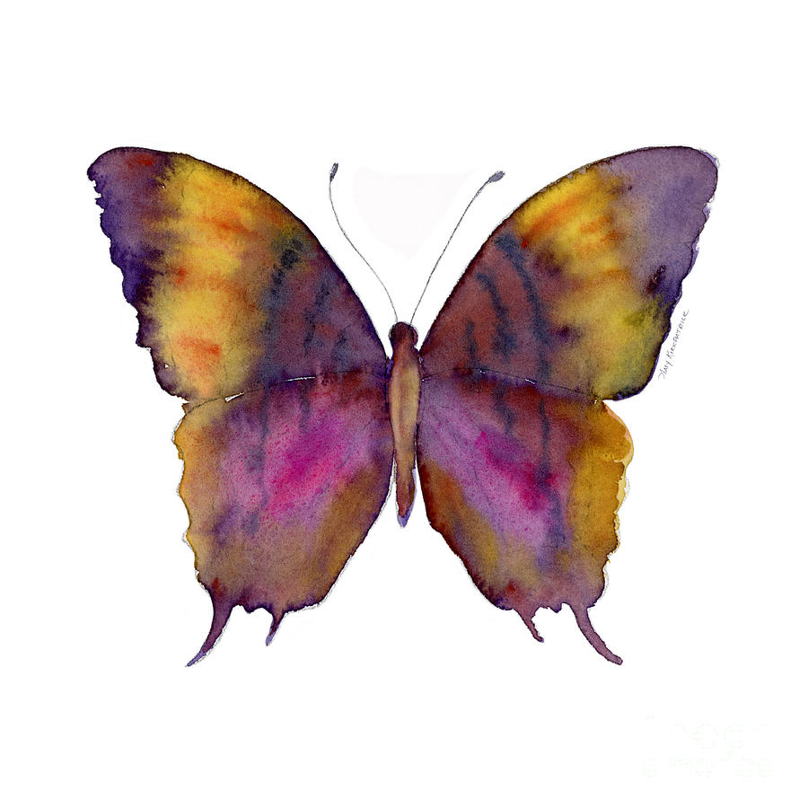 Butterflies Painting - 99 Marcella Daggerwing Butterfly by Amy Kirkpatrick