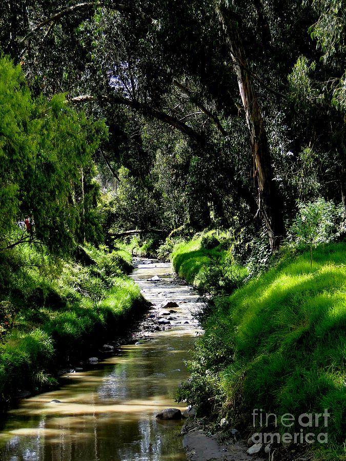 Al Bourassa Photograph - A Babbling Brook by Al Bourassa