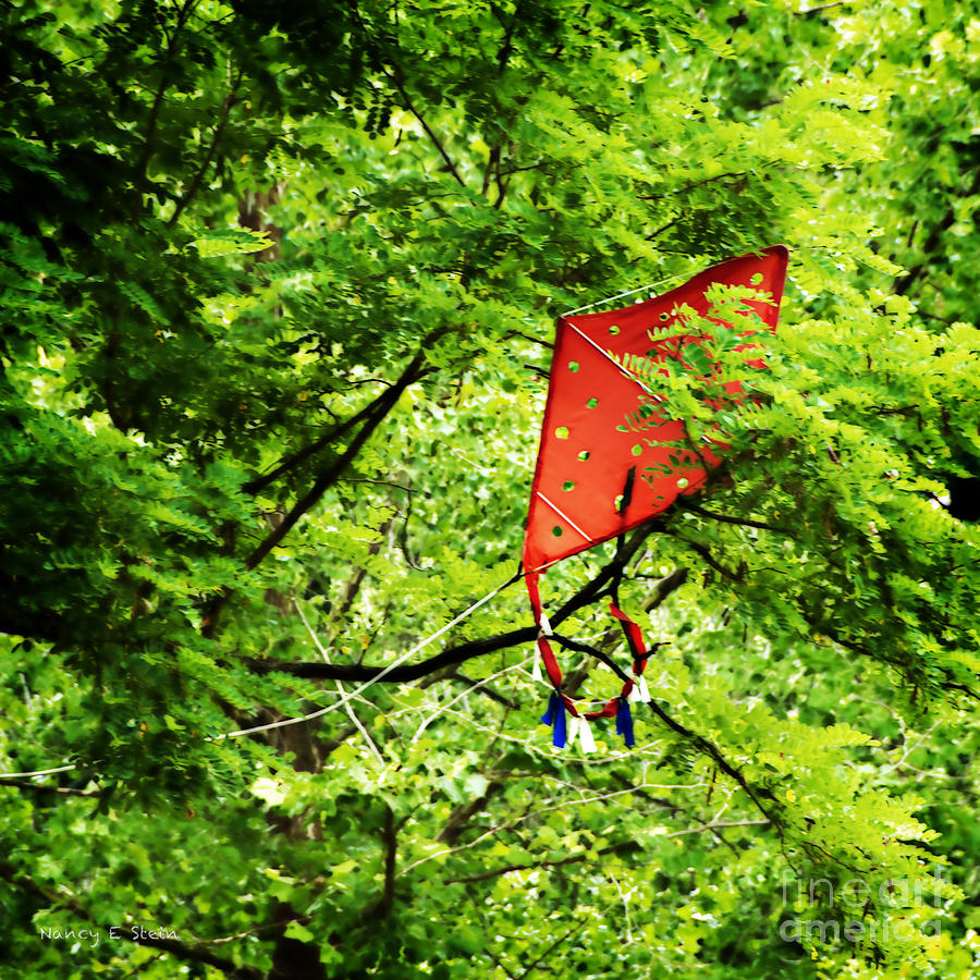 Kite Photograph - A Bad Day For Mary Poppins by Nancy Stein