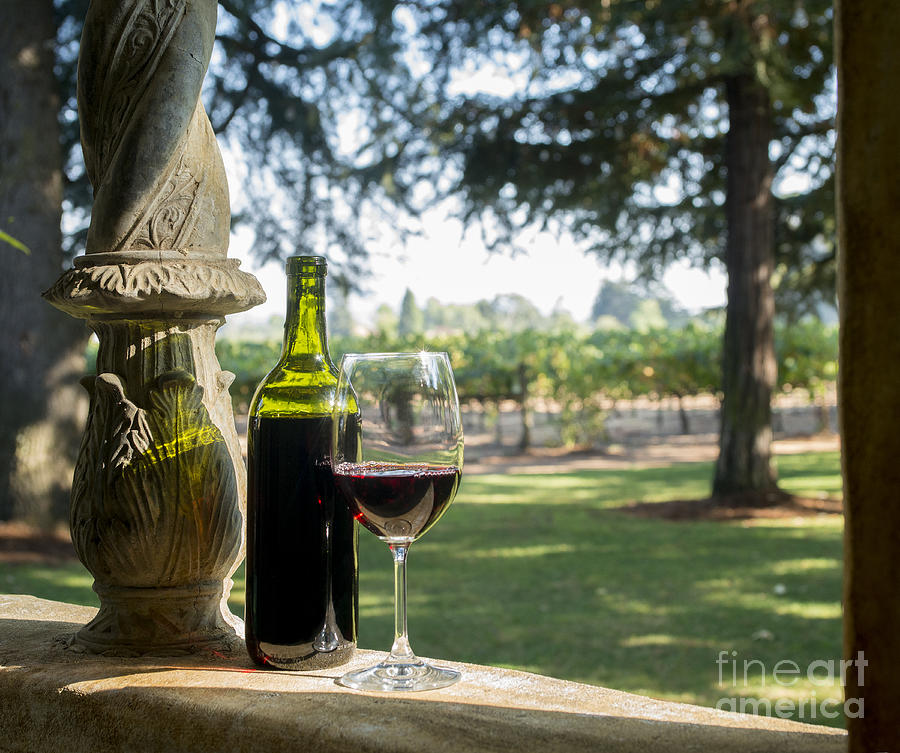 Wine Glasses Photograph - A Beautiful Day In Napa by Jon Neidert