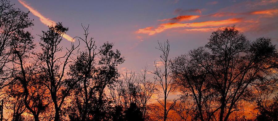 Sunset Photograph - A Beautiful Ending by Candice Trimble
