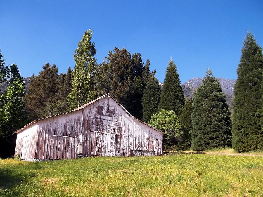 Country Photograph - A Bit Of Country by Glenn McCarthy Art and Photography