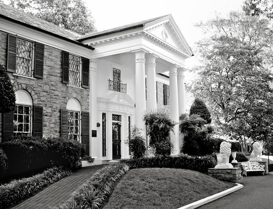 Mansion Photograph - A Bit Of Graceland by Julie Palencia