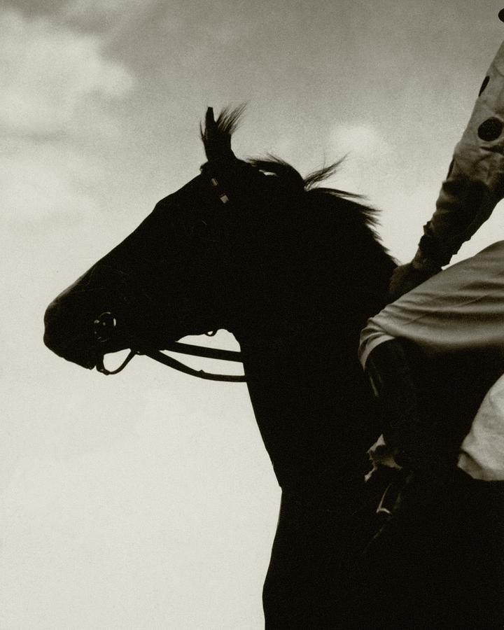 A Black Racehorse Photograph by Edward Steichen