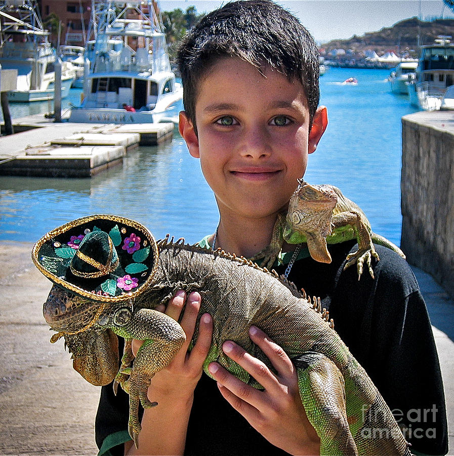 Boy Photograph - A Boy And His Iguanas by Amy Fearn