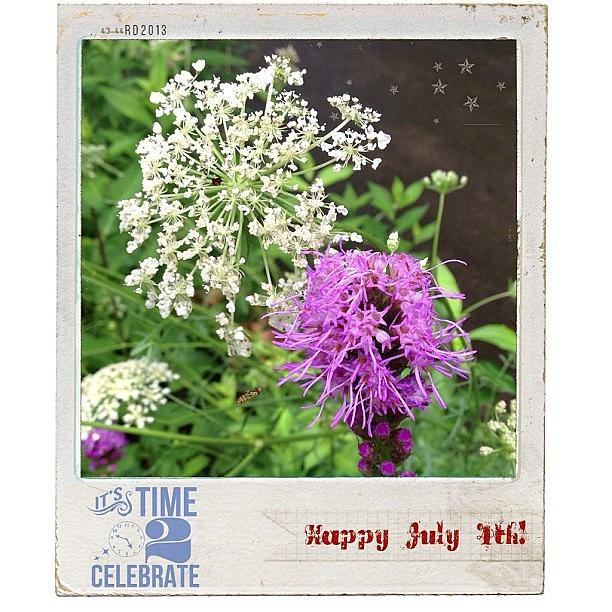Summer Photograph - A Break In The #rain Today. Happy 4th by Teresa Mucha