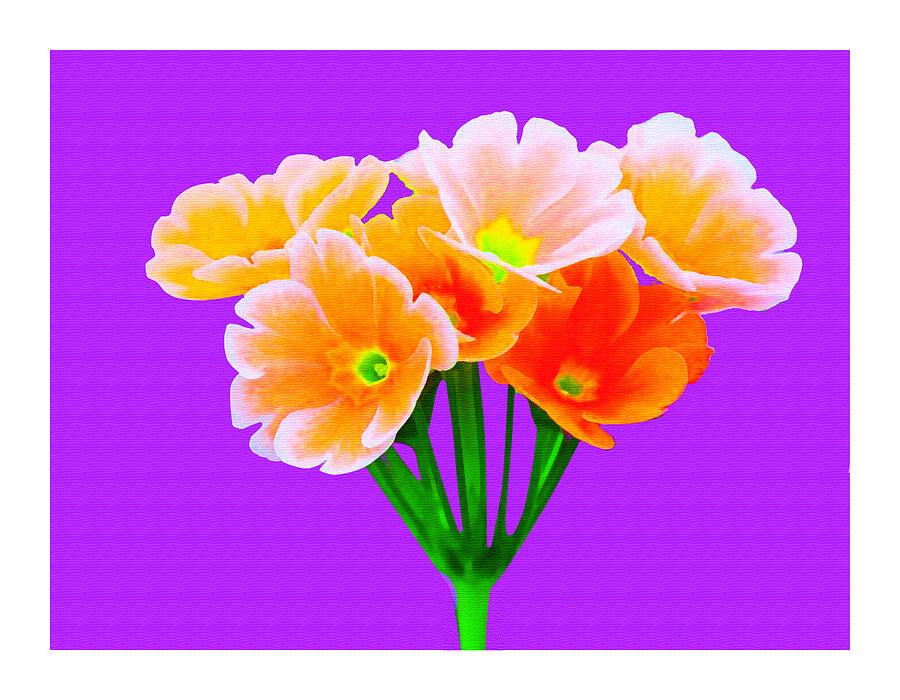Flowers Digital Art - A Bunch Of Beautiful Flowers by Ck Gandhi
