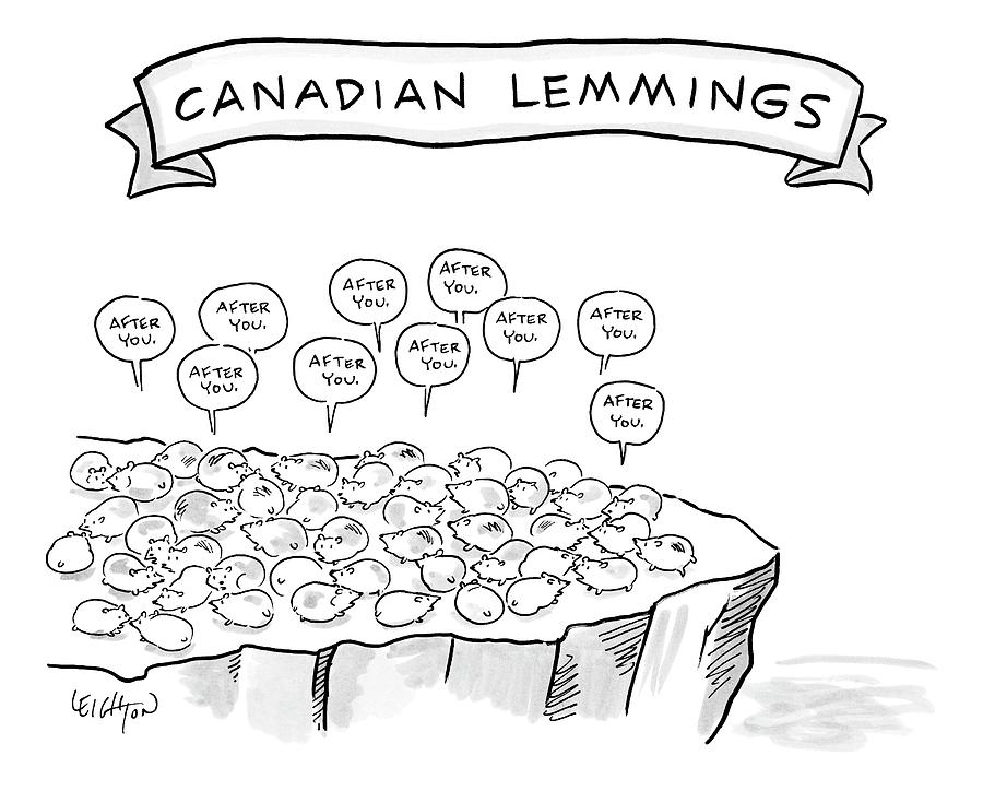 A Bunch Of Lemmings On A Cliff Saying After You Drawing by Robert Leighton