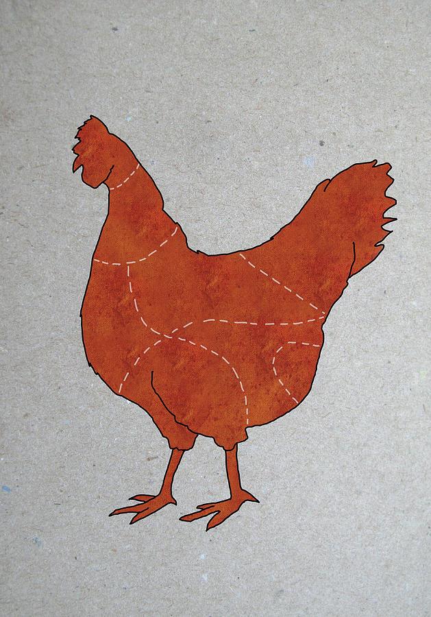 A Butchers Diagram Of A Chicken Digital Art by Malte Mueller
