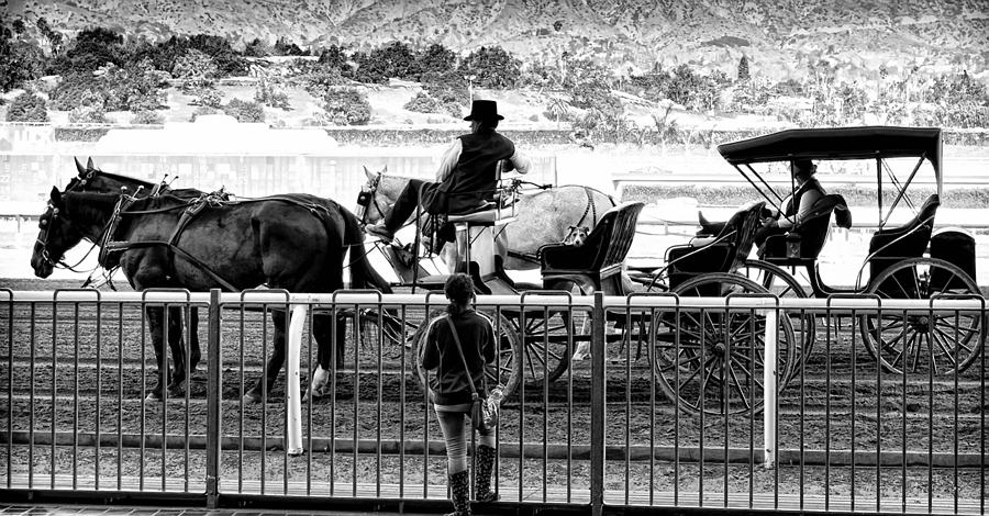 Horse Photograph - A Casual Observer by Camille Lopez