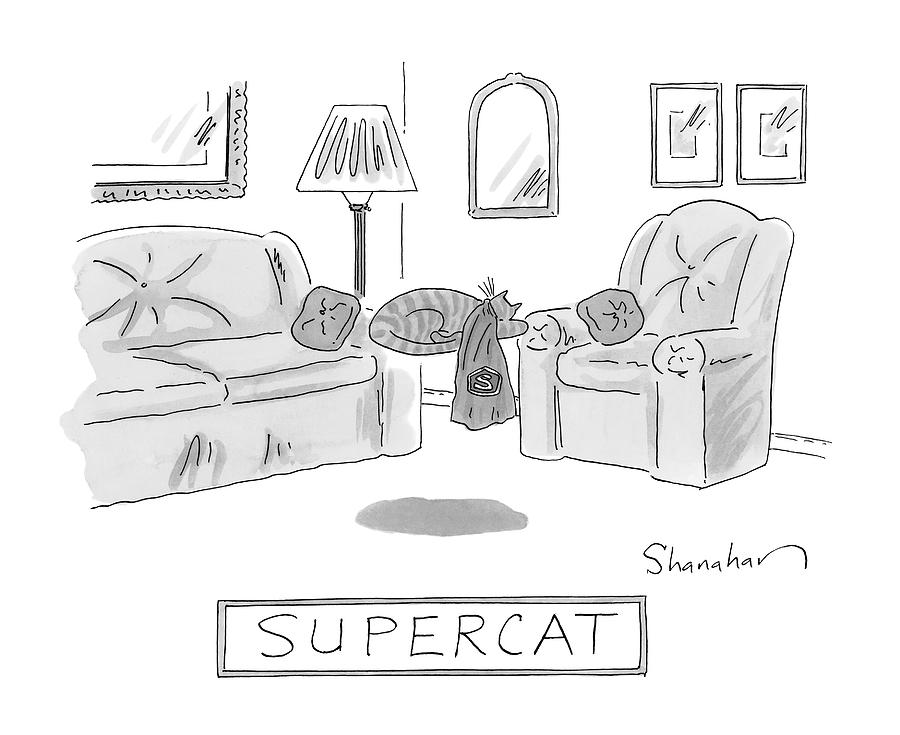 A Cat With A Cape Is Seen Sleeping And Levitating Drawing by Danny Shanahan