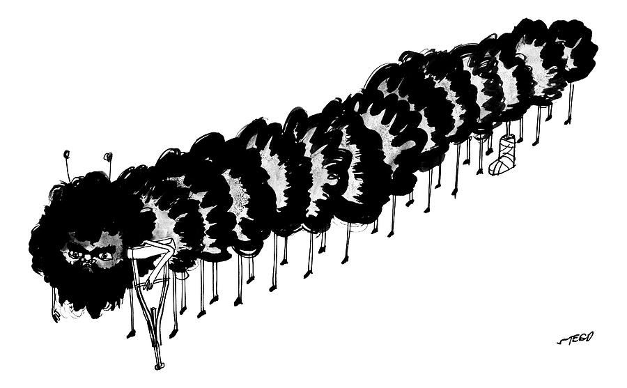 A Centipede With A Crutch And A Cast On Its 8th Drawing by Edward Steed