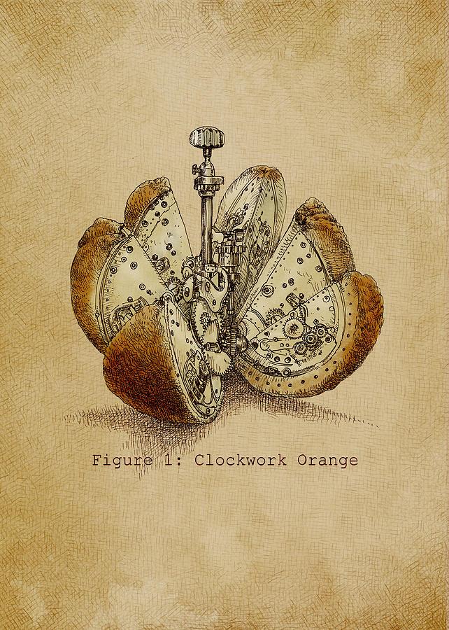 Orange Drawing - Steampunk Orange - Option by Eric Fan